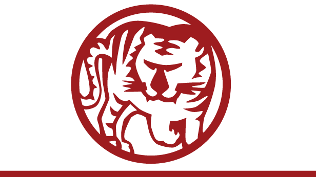 chinese-new-year-tiger-616