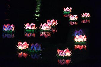 蓮花水燈-拷貝